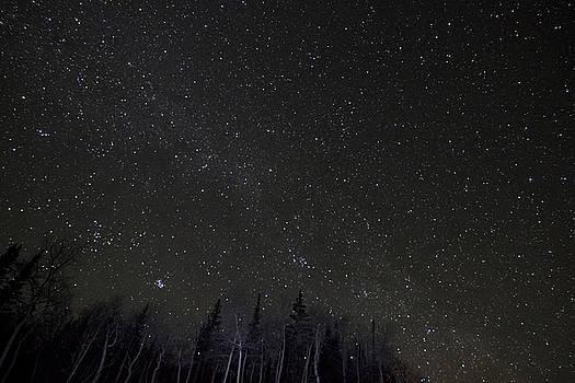 Star Trails 1 by Scott Harris