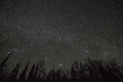 Star Trails 2 by Scott Harris