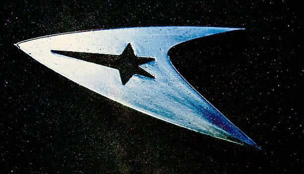 Star Trek Pin by Lonnie Paulson