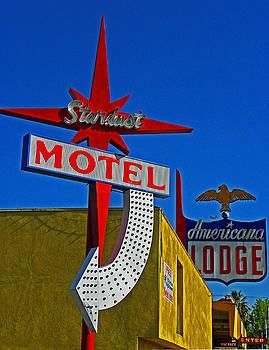 Elizabeth Hoskinson - Stardust Motel IV