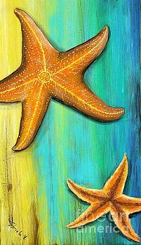 Starfish  by Gabriela Valencia