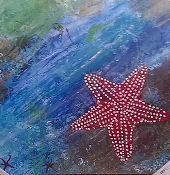 Starfish by Judi Goodwin