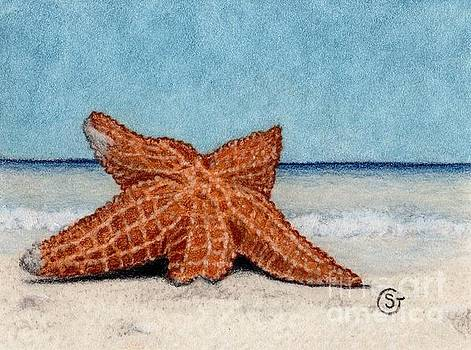 Starfish Stranded on the Beach by Sherry Goeben