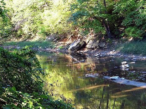 Starr Creek by Jamie Johnson
