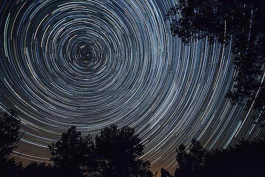 Starry night sky, startrails between trees landscape by Lukasz Szczepanski