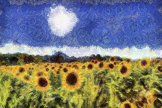 Starry Night Sunflowers by David Pyatt