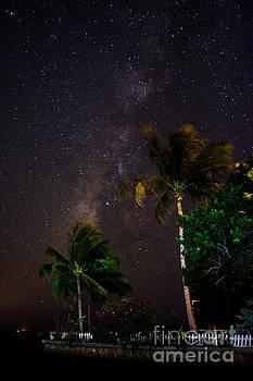 Starry Point by Quinn Sedam