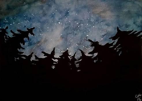 Starry sky by Carole Hutchison