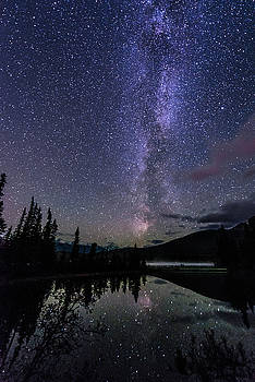 Alex Lapidus - Starry Starry Night