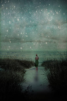 Stars Above the Beach by Olivia StClaire