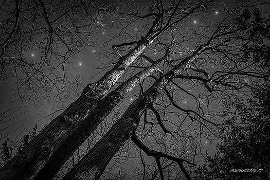 Stars at Night by LeeAnn McLaneGoetz McLaneGoetzStudioLLCcom