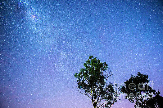 Stars in the clear night sky by Rob D