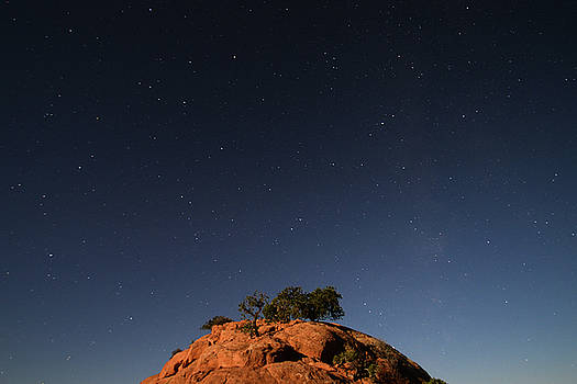 Stars over Juniper by Cadence Chinle