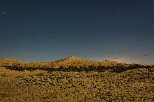 Stars over Kelso Dunes by Gaelyn Olmsted