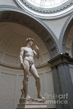 Statue of David by Denise Lilly