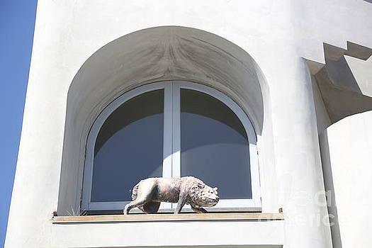 Chuck Kuhn - Statue window