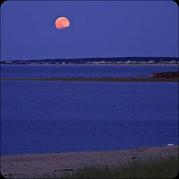 Stawberry Moon by Frank Winters