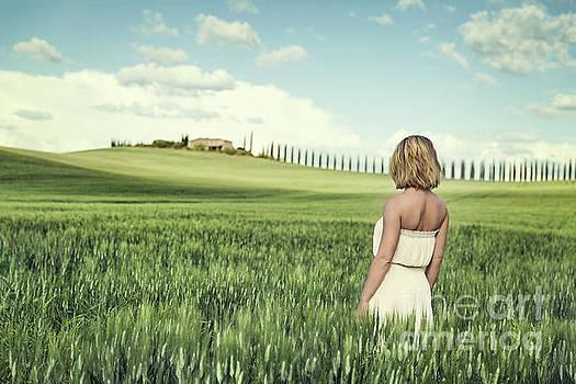 Stay A Little Longer by Evelina Kremsdorf