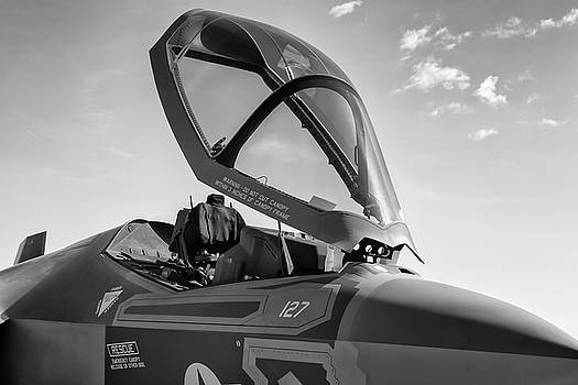 Stealth in Black and White - 2017 Christopher Buff, www.Aviationbuff.com by Chris Buff