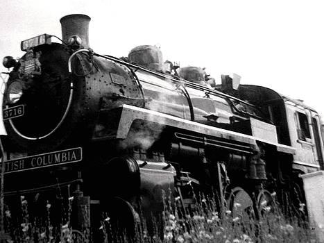 Steam Engine 3716 Monochrome by Will Borden