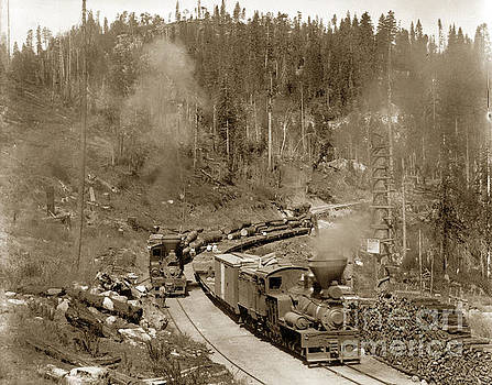 California Views Mr Pat Hathaway Archives - steam locomotives No. 2 No. 5 of the Madera Sugar Pine Co.  Circa 1915