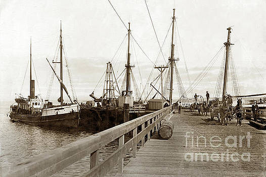 California Views Mr Pat Hathaway Archives - Steam schooner Grace Dollar Docked at Oil pier Monterey c 1904