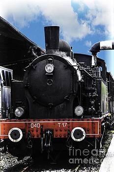 Steam Train by Daniela White