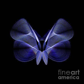 Steel Butterfly by Brian Jones
