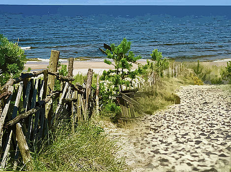 Steep Sand Track To The Ocean Montage by Clive Littin