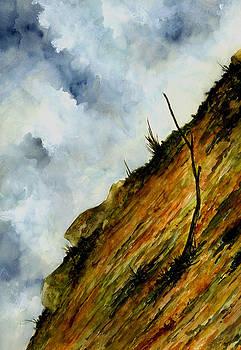 Steep Slope by Michael Vigliotti