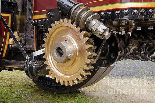 Steering links by Steev Stamford