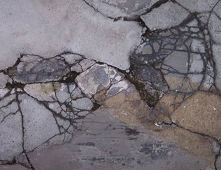 Step on a Crack 2 by Anna Villarreal Garbis
