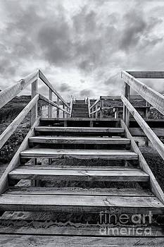 Step on up by Linda Lees