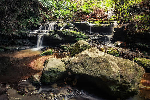 Stepping Cascade - Leura, Blue Mountains, Australia. by Daniela Constantinescu