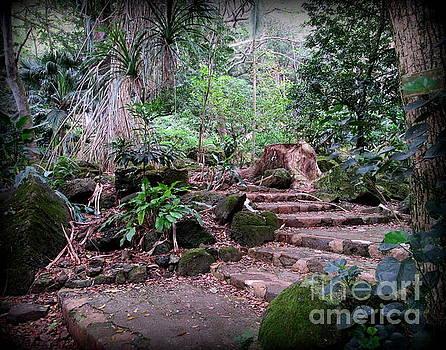 Steps in Waimea Valley by Joy Patzner