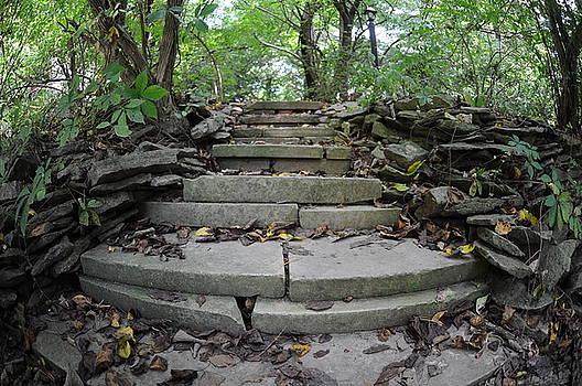 Steps by Jon Benson