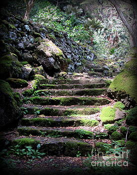 Steps to a Sacred Place by Joy Patzner