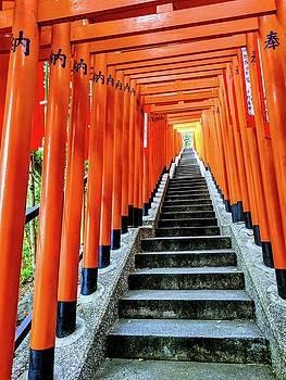 Steps by Ty Agha