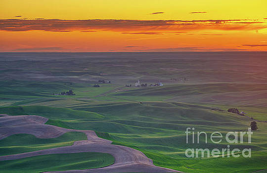 Steptoe Butte Sunset Rolling Fields by Mike Reid