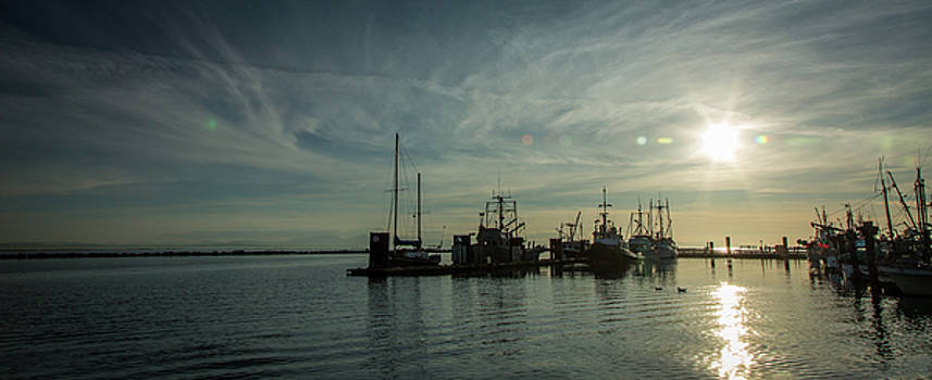 Steveston Docks by Monte Arnold