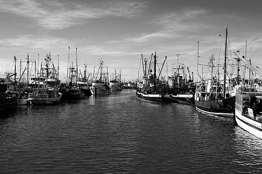 Steveston Fishboats by Colin Sands