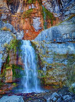 Stewart Falls by David Millenheft