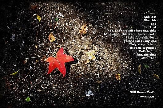 Still Brown Earth by AJ Walker