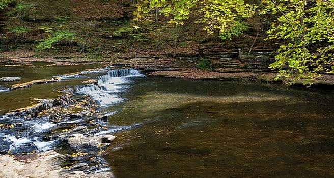 Still Hollow Falls by Dennis Reagan