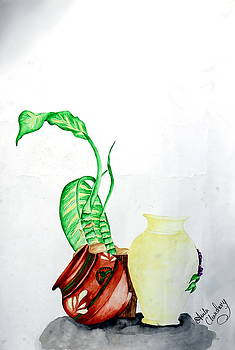 Still life 1 by Anila Choudary