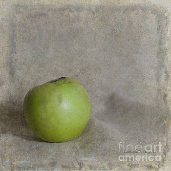 Still Life in Square Format by Laurinda Bowling