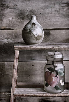 Still Life Ladder by Terri Tiffany
