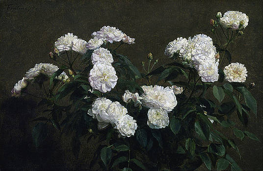 Still Life of White Roses by Henri Fantin-Latour