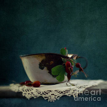 Still life with Rosehips by Priska Wettstein