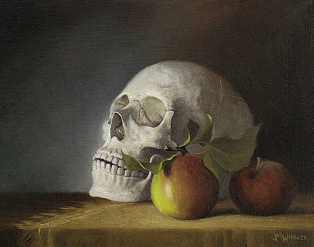 Still Life With Skull by Joe Winkler